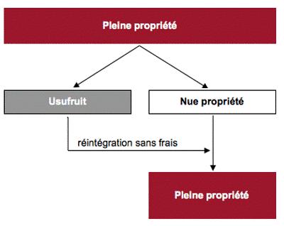 Démembrement de propriété SCPI – Démembrement propriété définition